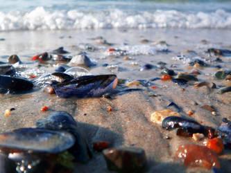 oceans melody . by yaq1xsw2