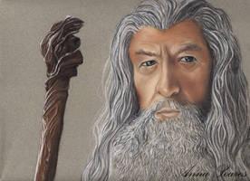 Gandalf by Anninhabs