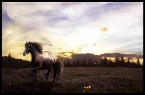 when i return. [edited] by falitna