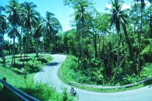 Road by tinelijah