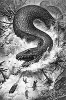 Snake and Ravens by DominikBroniek