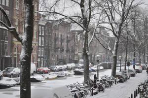 o snowy night by Ariana-van-adelwolf