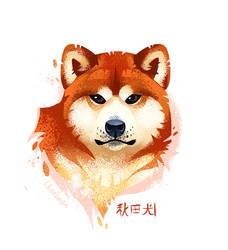 Akita Stylistic Portrait by koel-art