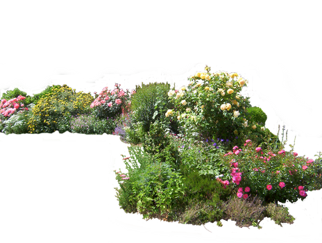Flowered garden png 02 by HermitCrabStock