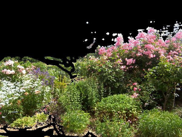 Flowered garden png 01 by HermitCrabStock  regarding DeviantArt