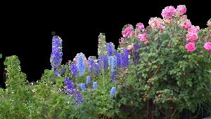 Flowered garden png 06 by HermitCrabStock