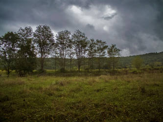 Autumn 2014 - Field before the storm 01 by HermitCrabStock