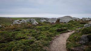 Brittany 07 - Rocks and Heath by HermitCrabStock