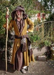 Halloween 1706 - Wizard by HermitCrabStock