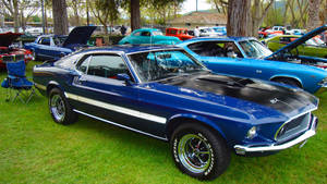 Blue Mustang. by SYSPLUCK