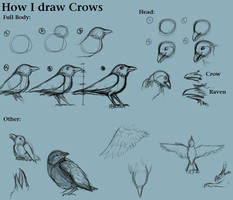 How I draw Crows by CreatTheCrow
