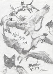 Frigg's flying cats by Bohemian-girl