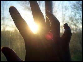 Catch The Light by Pascalou