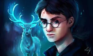 Harry Potter by Ludmila-Cera-Foce