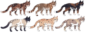 Cat Adopts 18 [ CLOSED ] by Chintzy-Adopts