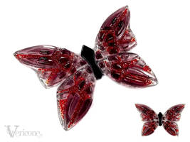 Butterfly by vericone