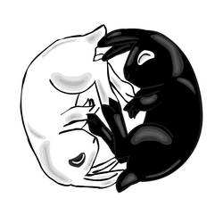 Yin Yang Rabbits by Nortiker