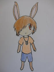 A Raposa drawing of me by littlekirby61524
