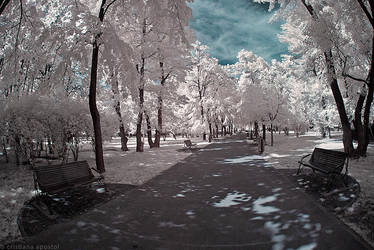 Infrared - Memory Lane by CristianaApostol