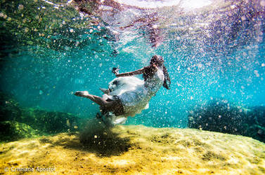 Underwater - Snowfall by CristianaApostol