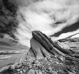 Broom Point, Newfoundland by ericbb