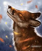 Rain by FlashW