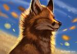 Wind by FlashW