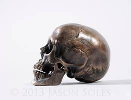 Bronze Skull by MrSoles