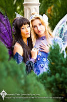 Fairy Glances by Firefly-Path