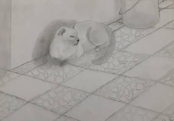 nice kitty by boleynchick