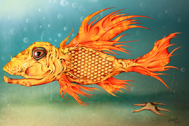 Fish by Keith0186
