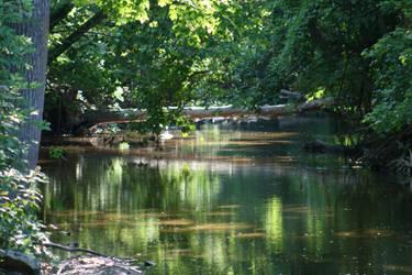 Sunny Creek by StripedDemon