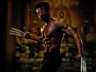 Wolverine by madhailstorm