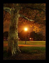 Tree by severfire