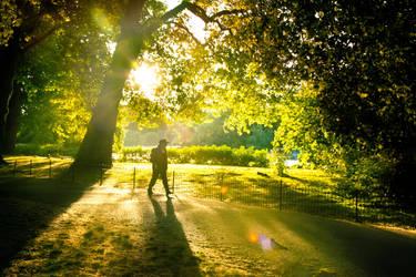 Walk the light by Awstein