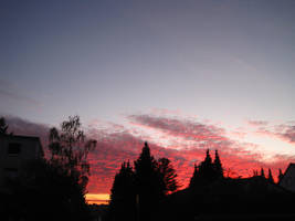 Pink clouds at sunrise by MutantPiratePrincess