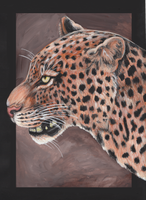 Leopard by Gray-Ghost-Creations