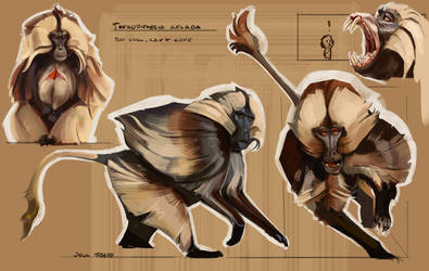 Sketchbook - Colour and Light (Gelada) by CaconymDesign