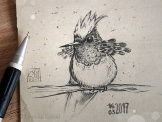 # 08 - Tufted Coquette - by Loisa