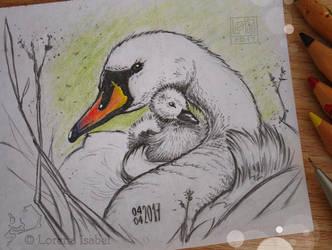 # 27 - Mute Swan - by Loisa