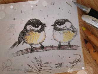 # 29 - Black-capped Chickadee - by Loisa