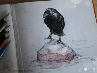 # 38 - Carrion Crow - by Loisa