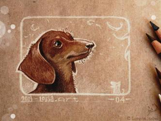 04 - Dachshund dog by Loisa