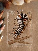 08 - Caterpillar by Loisa
