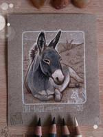 33 - Donkey by Loisa