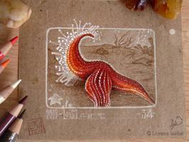 34 - Starfish - by Loisa