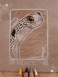 48 - spotted garden eel by Loisa
