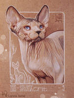 03 - Sphynx Cat by Loisa