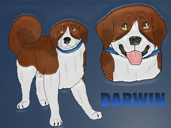 Waggins Down House Darwin  by Waggintails-Rescue