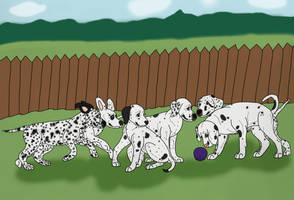 Puppies At Play by Waggintails-Rescue